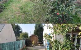 Avant/après jardin minéral