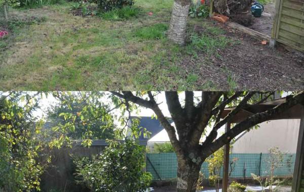 Jardin Minéral avant-après