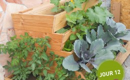 Potager composteur Easy jardin