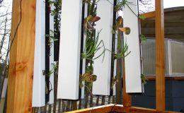 Aqua Potager vertical – Aquaponie Nantes