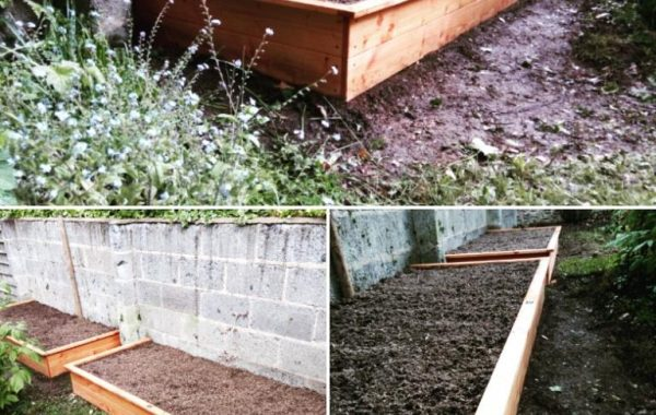 Potager en rectangle 230x100x30 en Douglas