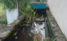Aquaponie sur mesure – Aquaponie Nantes